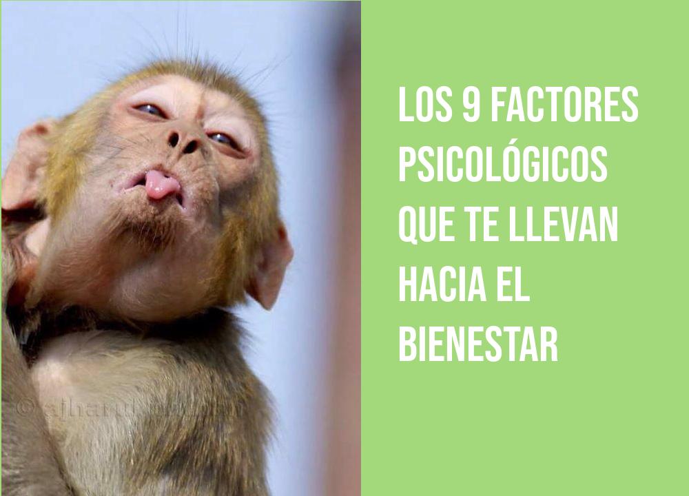 Los 9 factores psicológicos que te llevan hacia el bienestar