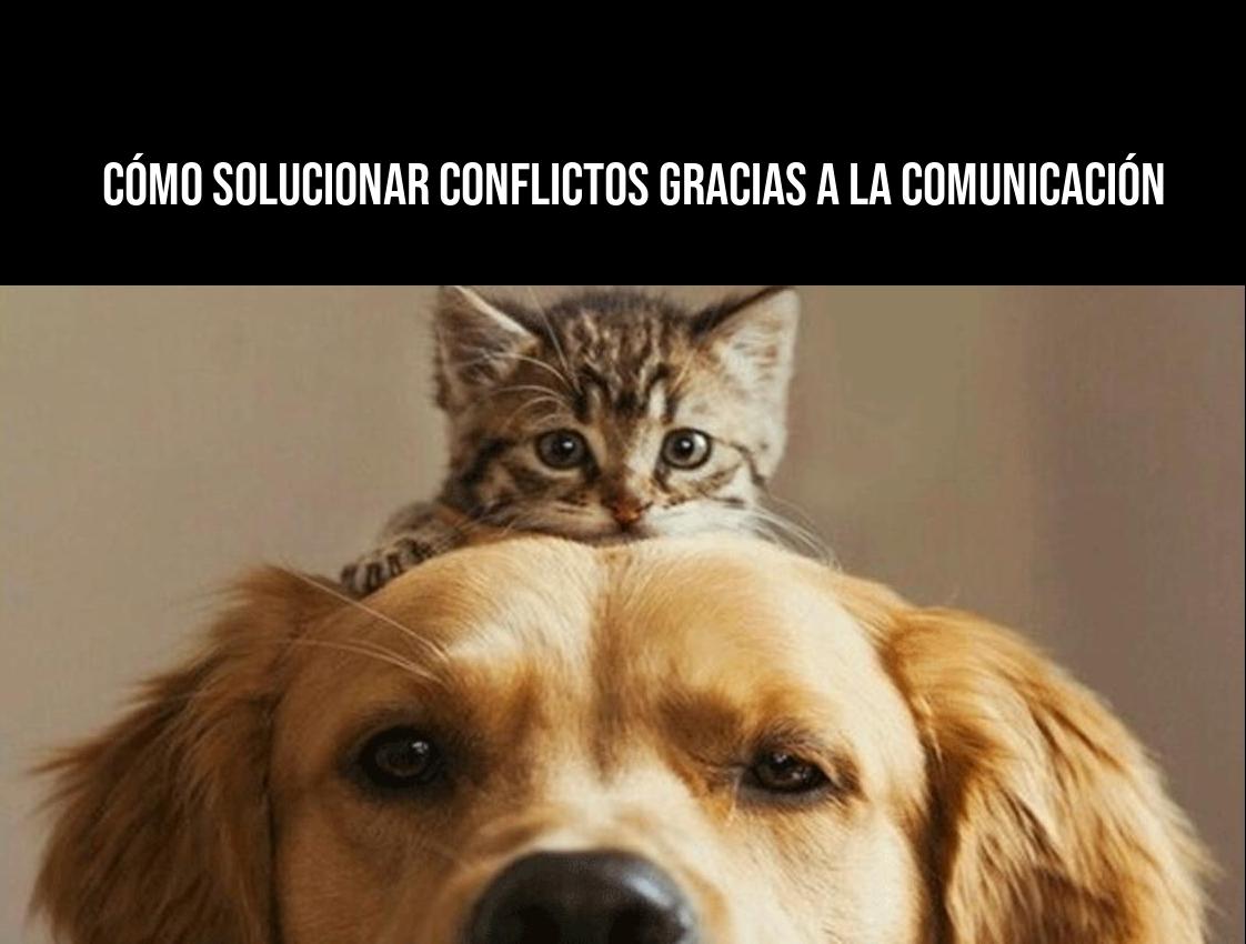 Cómo solucionar conflictos gracias a la comunicación